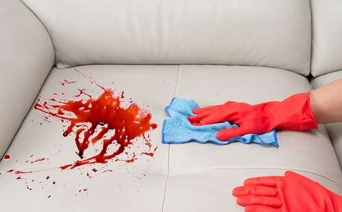 руки в резиновых перчатках моют кожаный диван от пятен крови