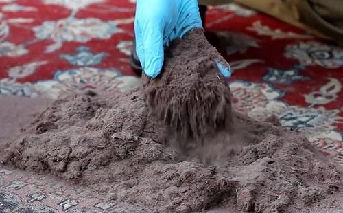 на ковре груда пыли и грязи ее собирает рука в резиновой перчатке