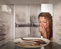 Как в домашних условиях устранить запах в холодильнике быстро? 39  рецептов кристальной чистоты!